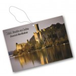 29 Irish Castle on Lake
